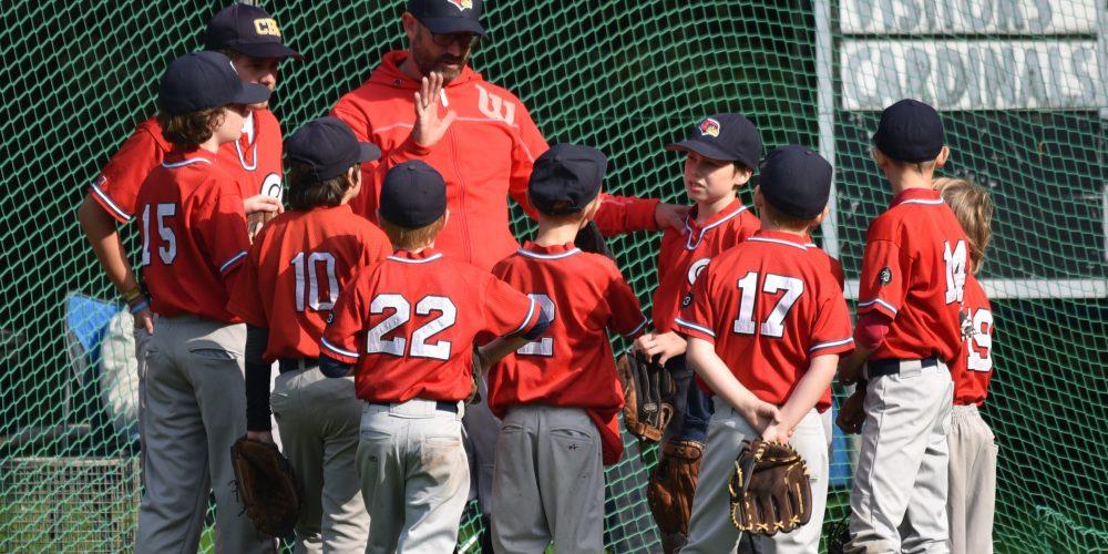 Cardinals Live Pitcher kommen trotz Startschwierigkeiten zu 2 Siegen