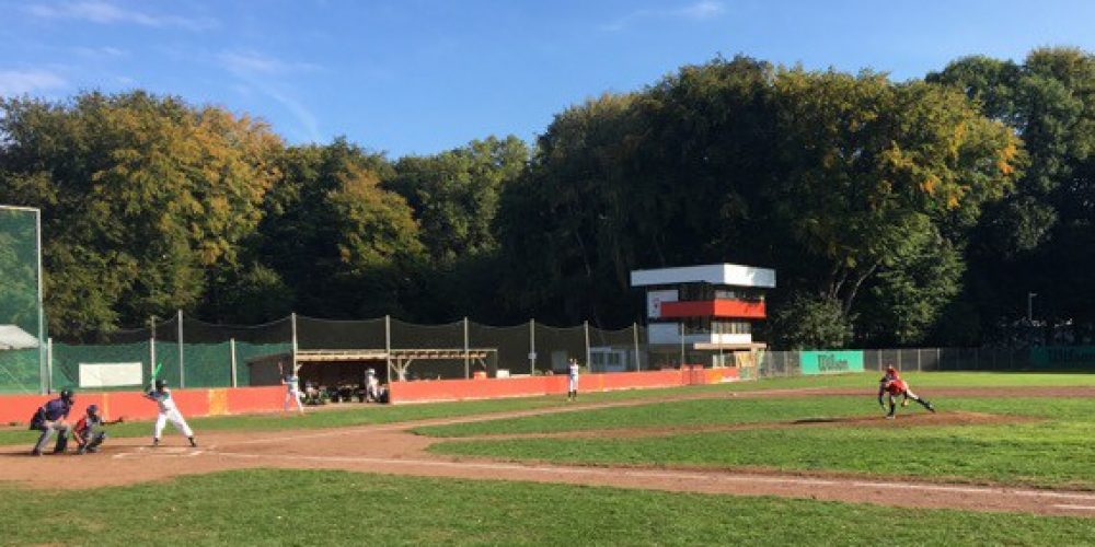 Cardinals Junioren unterliegen Zülpich