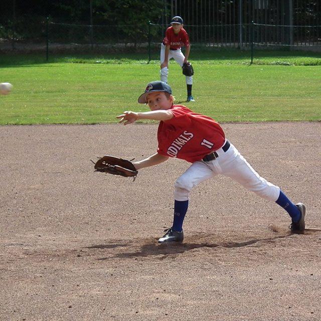 Cardinals auch gegen die Solingen Alligators erfolgreich